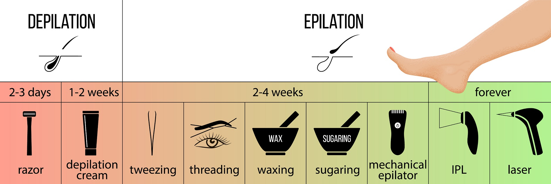 Grafik Unterschied Depilation und Epilation